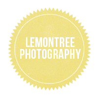 Lemontree Photography ~ New Forest, Winchester, Salisbury, Bournemouth & Hampshire Wedding Photographers logo